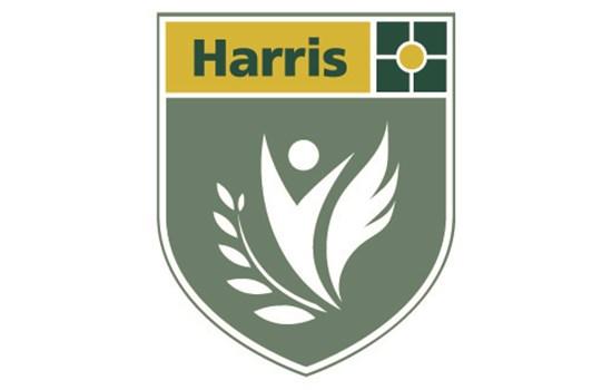 Harris Battersea Academy